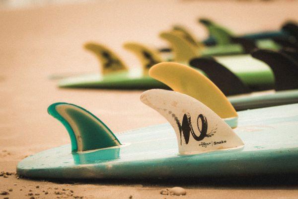 Quilhas de pranchas de surf